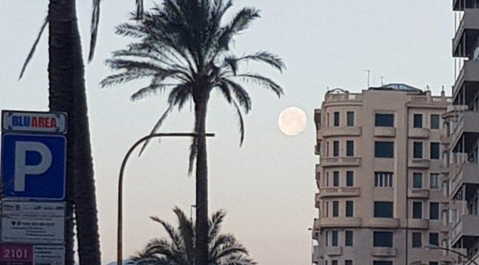 Questa mattina luna grande